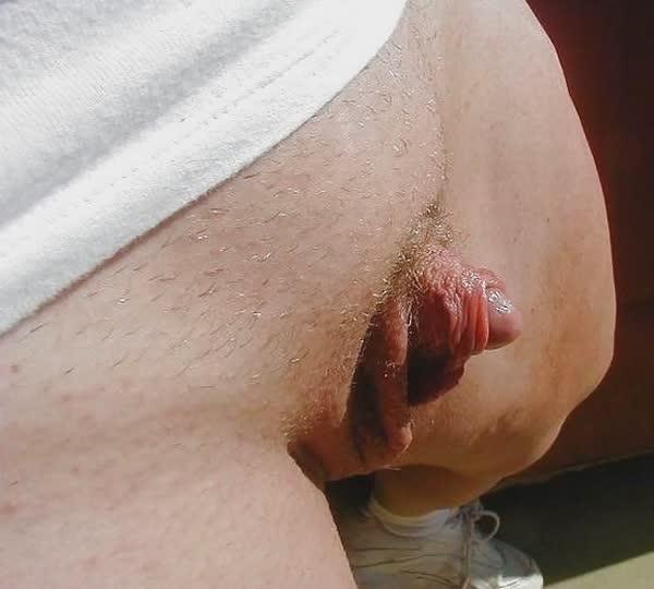 fotos-caseiras-de-grelos-deliciosos-17